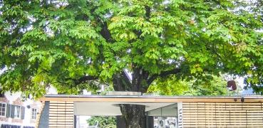 Info-Centers Garmisch Partenkirchen